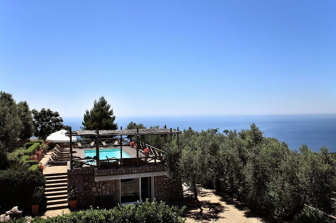 panoramic swimming pool surrounded by olive trees